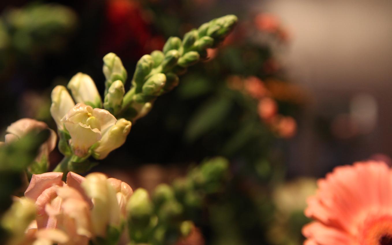 Altijd Bloemen, bloemist in Blaricum - aankleding met bloemen bestellen 3